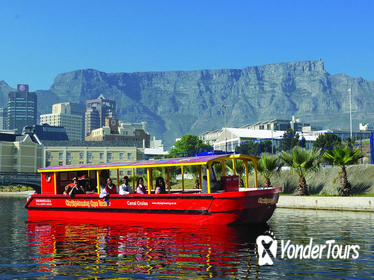 Cape Town 30-minute Sightseeing Cruise with Live Commentary