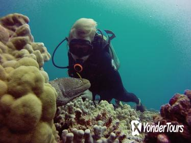 Certified Diving Tour: Waikiki South Shore Shallow Boat Dive