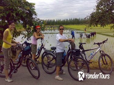 Chiang Mai Paradise Full-Day Cycling Adventure