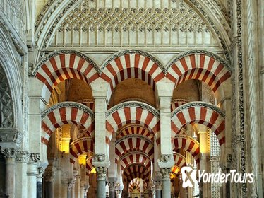 Córdoba Private Guided Day Tour from Madrid