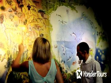 Cozumel Combo Tour: Discover Mexico Park and Chankanaab Day Pass