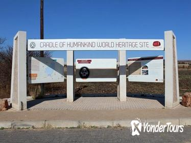 Cradle of Human Kind and Lion Park Tour Full day Tour from Johanensburg
