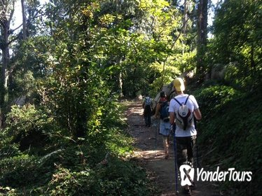 Day Hike in Sintra Natural Park
