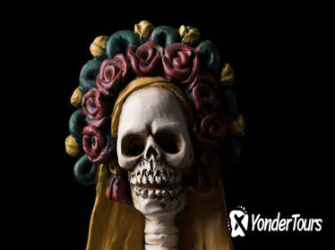 Day of the Dead Tour in Mexico City with Xochimilco Canal Ride