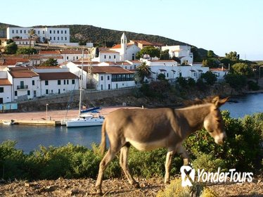 Day Tour to Asinara National Park Including Lunch
