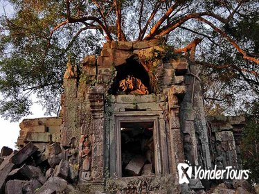 Day Trip to Beng Mealea Temple and Kampong Khleang from Siem Reap