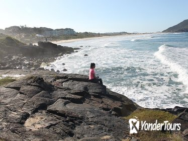 Day Trip to the Northern Beaches of Florianópolis