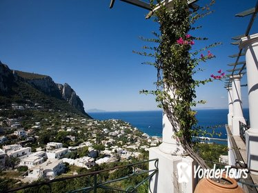 Discover Capri-Anacapri Boat tour Winter season