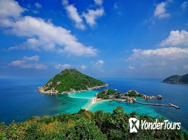 Diving Trip at Koh Tao from Koh Samui Including Lunch