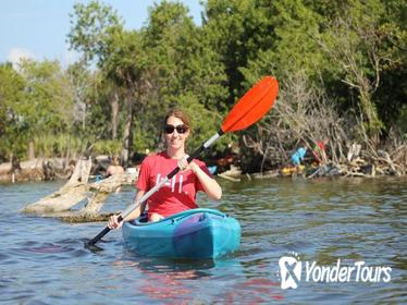 Econlockhatchee River Kayaking Tour in Florida