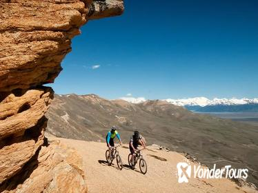 El Calafate Downhill Mountain Biking Adventure