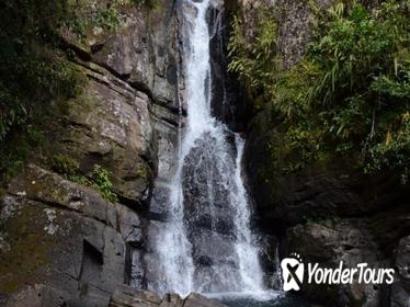 El Yunque Rain Forest Nature Walk and Bioluminescent Bay Kayaking Combo Tour