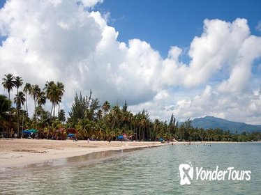 El Yunque Rainforest and Luquillo Beach