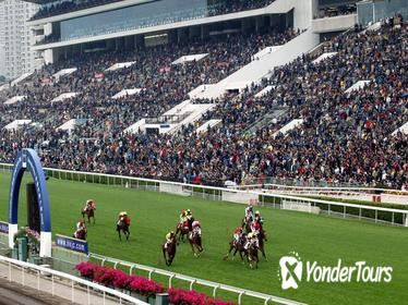 Enjoy the horse races as a VIP guest at the Shatin Racetrack!
