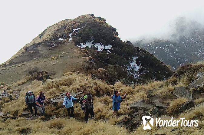 Enjoy your Mardi Himal Base Camp Dream Trekking in 3 Days from Pokhara Nepal
