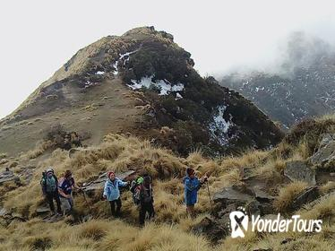 Enjoy your Mardi Himal Base Camp Dream Trekking in 3 Days from Pokhara Nepal