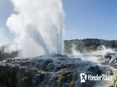 Exciting Rotorua Day Trip from Auckland