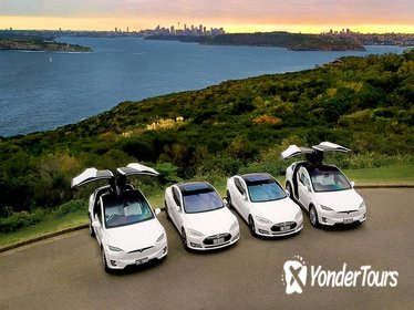 Full Day Private City & Northern Beaches - Luxury Tesla Tour