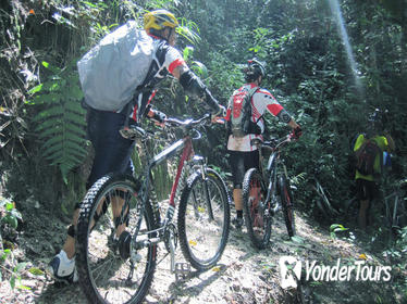 Full-Day Advanced XC Downhill Biking at Doi Suthep National Park Chiang Mai