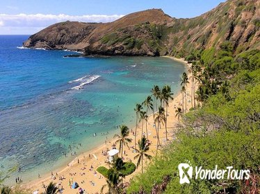 Full-day Circle Island Tour on Oahu