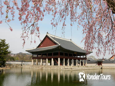 Full-Day Essential Seoul Tour