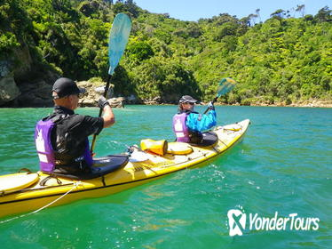 Full-Day Guided Sea Kayak Trip from Picton
