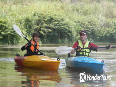 Full-Day Leisure River Kayaking into Mae Taeng Forest Reserve from Chiang Mai
