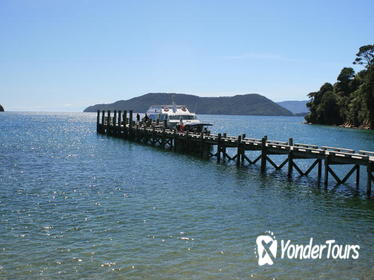 Full-Day Marlborough Catamaran Cruise with Wine Tour and Lunch