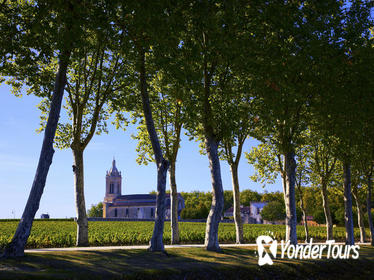 Full-Day Medoc Wine Tour from Bordeaux
