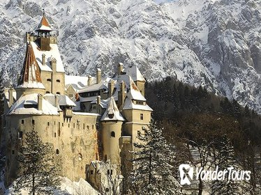 Full-Day Private Tour from Bucharest to Transylvania: Sinaia Castle, Dracula's Castle, Rasnov Fortress, Dino Park and Valea Cetatii Cave