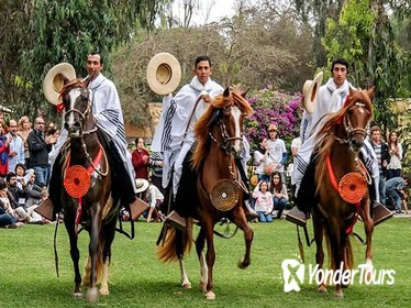 Full-Day Private Tour of Pachacamac Site and Peruvian Paso Horse Show from Lima