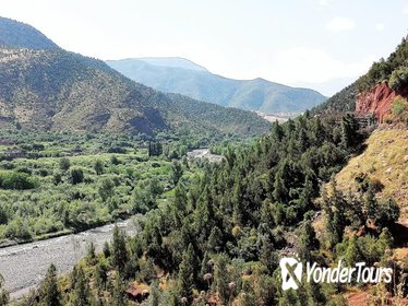 Full-Day Private Tour to Ourika Valley including Guided Trek and Lunch from Marrakech