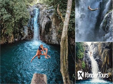 Full-Day Private Tour: The Waterfalls Adventure of Northern Bali
