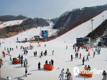 Full-Day Ski Package with Transportation from Seoul
