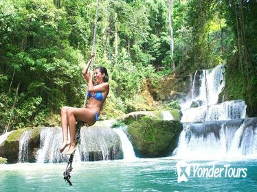 Full-day Tour to Appleton Estate and YS Falls from Montego Bay