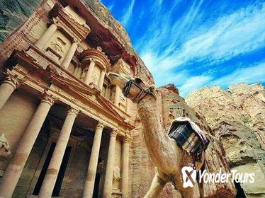 Full-Day Tour to Petra from Amman with Optional Guide