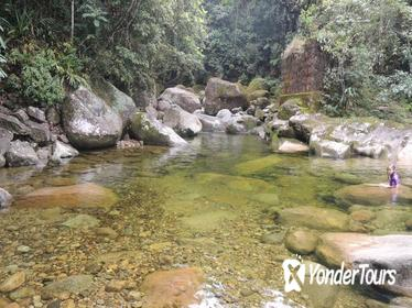 Full-Day Waterfalls and Nature Private Tour from Rio de Janeiro, Brazil