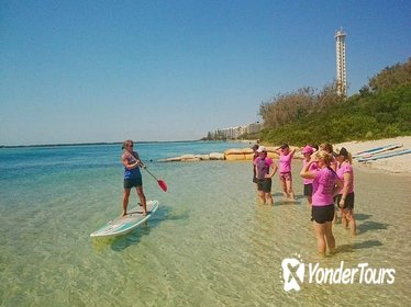 Golden Beach 1-Hour Stand-Up Paddleboard Hire on the Sunshine Coast