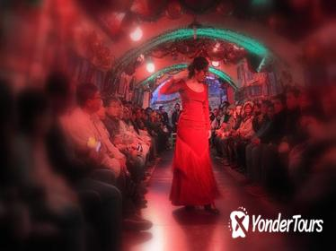 Granada Sacramonte Caves Flamenco Show with Albayzin Walking Tour