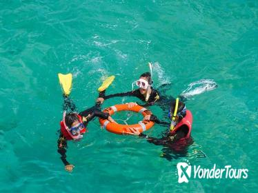 Green Island Day Trip from Cairns Including Snorkel Tour Experience