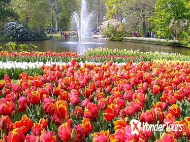 Guided Keukenhof and Diamonds Tour