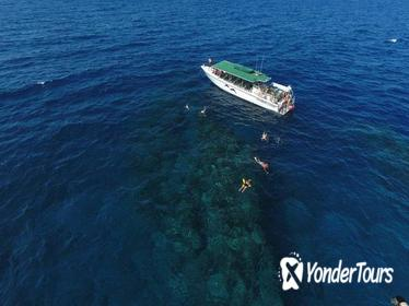 Half Day Snorkel Adventure and Dolphin Search (Dec through May Whale Watching)