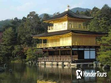 Half Day Tour of Nijo Castle and Golden Pavilion in Kyoto