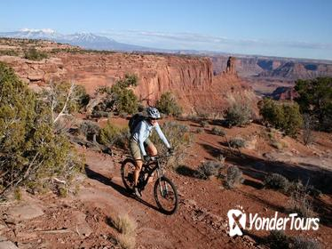 Half-Day Guided Mountain Biking Tour in Moab on Dead Horse