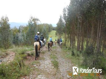 Half-Day Horseback Riding Tour from Cusco