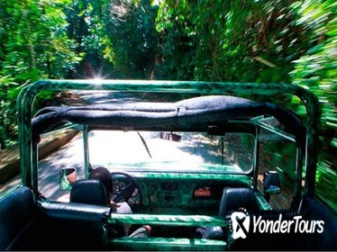 Half-Day Jeep Tour of Tijuca Forest