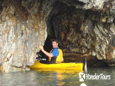 Harbour Coffee Kayak Tour from Batemans Bay