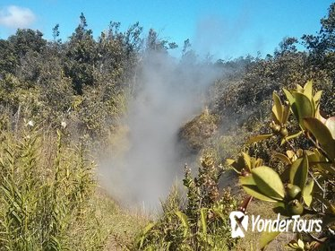 Hilo Hot Steam Volcano Tour: Waterfalls - Big Island Candies - Black Sand