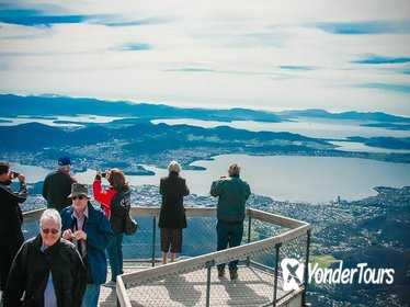 Hobart Highlights: Bonorong Wildlife Sanctuary and Mt Wellington