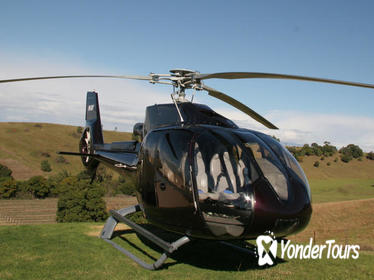 Hunter Valley Luncheon Tour by Helicopter
